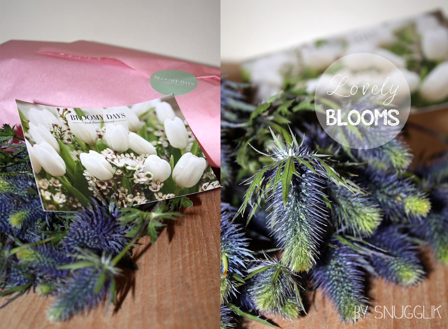 vorstellung_bloomy_days_01_112014